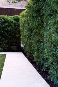Miraculous garden fence ideas #privacyfenceideas #gardenfence #woodenfenceideas