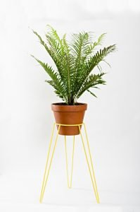 Terrific indoor plant holders #diyplantstandideas #plantstandideas #plantstand